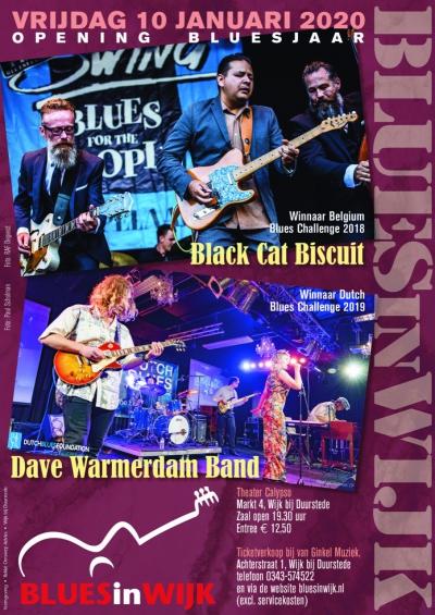Dave Warmerdam Band